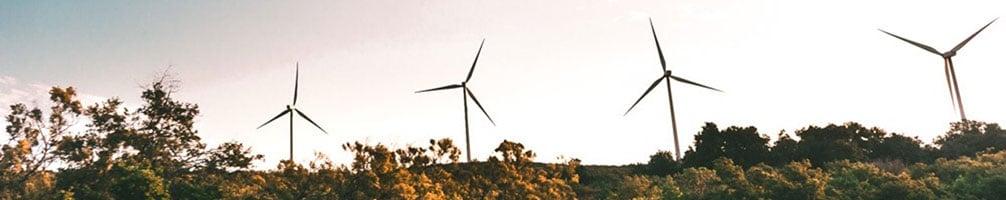 programa de la onu para el medio ambiente (PNUMA)